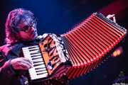 Kenny Margolis, acordeonista y teclista de Cracker, Kafe Antzokia, Bilbao. 2006