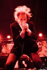 001 Funtastic Dracula Carnival 2013 Daddy Long Legs 2XI13
