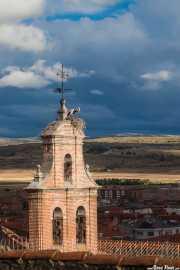 Nido de cigüeñas en la torre del Monasterio de Santa María de Gracia, Paseo del rastro, 2014