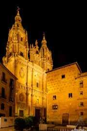 Casa de las conchas (1517) e Iglesia del Espíritu Santo La Clerecía (1754) (11/12/2014)