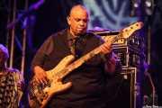 "Rodney ""Skeet"" Curtis, bajista de Maceo Parker, Getxo & Blues - Pza. Biotz alai, Getxo. 2015"