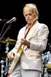 Al Jardine, cantante y guitarrista de Brian Wilson