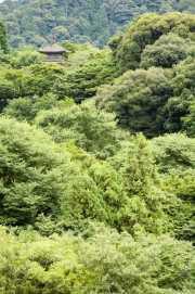 022_vacaciones_sept06_kyoto