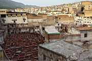 063_vacaciones_marzo-09_marruecos_fez