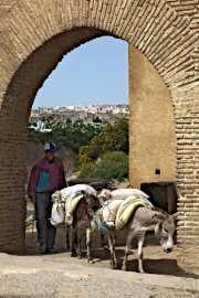 013_vacaciones_marzo-09_marruecos_fez