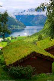 018_vacaciones_julio_2011_noruega__vacaciones_julio_2011_noruega_geiranger