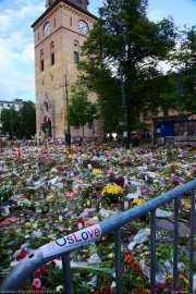 016_vacaciones_julio_2011_noruega__vacaciones_julio_2011_noruega_oslo