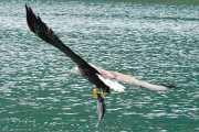 041_vacaciones_julio_2011_noruega_svolvaer_islas_lofoten