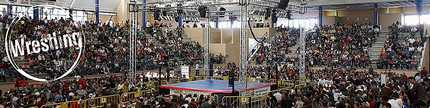 Galerías de fotos de Wrestling por Dena Flows