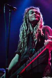 Daniel Lorca, bajista de Nada Surf (, , 2008)