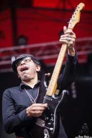 Kid Congo Powers, cantante y guitarrista de Kid Congo and The Pink Monkey Birds, Andoaingo Rock Jaialdia, 2014
