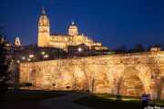 Catedral Nueva de la Asunción de la Virgen de Salamaca, con el puente romano en primer plano (11/12/2014)