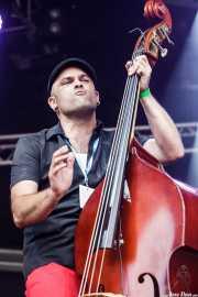 Guillermo González del Campo, contrabajista de MadMartin Trio, Azkena Rock Festival, Vitoria-Gasteiz. 2015
