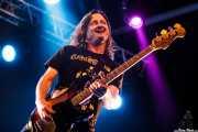 Steven McDonald, bajista de Off!, Azkena Rock Festival, Vitoria-Gasteiz. 2015