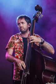 Ryan Monro, contrabajista de The Cat Empire, Bilbao BBK Live, Bilbao. 2015