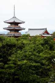 047_vacaciones_sept06_kyoto