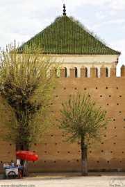 011_vacaciones_marzo-09_marruecos_fez